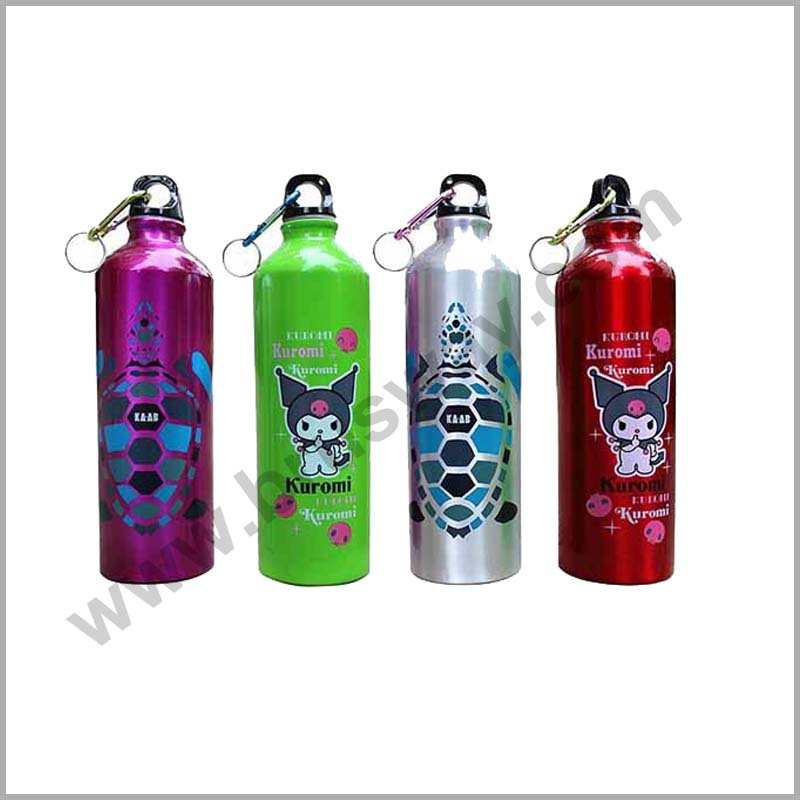 Customize Fashional stainless steel hot and cold Vacuum Bottle BW-00142
